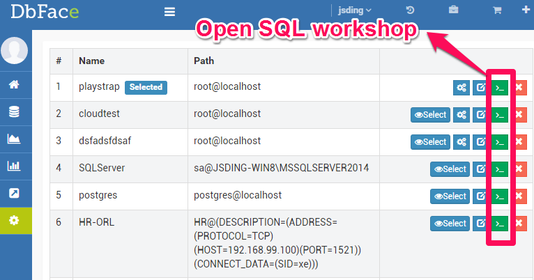 Open SQL workshop in DbFace